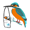 Kingfisher Partnership